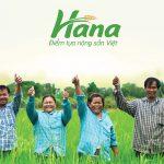 Thiết kế logo và nhận diện thương hiệu HANA tại Hà Nội